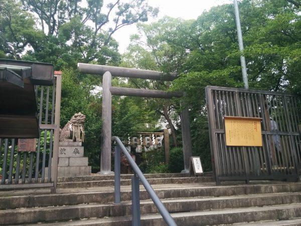 堀越神社|大阪天王寺|一生に一度の願いを!ご神木を取り巻く三つの社から強力なパワ
