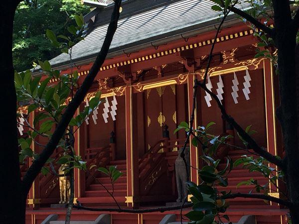 大国魂神社|東京府中|「癒し」と「縁結び」のパワースポット!!
