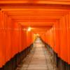 稲荷神・宇迦之御魂神・倉稲魂命(うかのみたま) | 「いにしえの都」日本の神社・パ